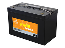 Batteri 100Ah/12V/306x168x210 <br />Drift - AGM - Deep Cycle