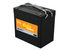 Batteri 55Ah/12V/229x138x213 <br />Traction - AGM - Deep Cycle