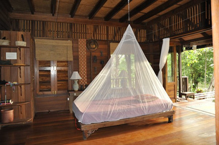 Cocoon Travel Indoor Mosquito Net Single