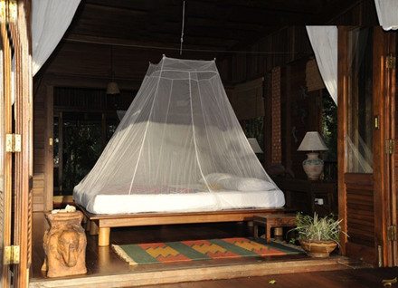 Cocoon Travel Indoor Mosquito Net Double