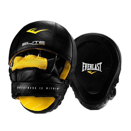 Everlast Elite Leather Punch Mitts