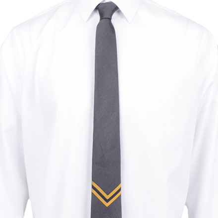AN IVY CPH THE SERGEANT TIE