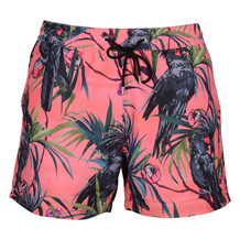 Paul Smith SHORTS DRAGON BIRD