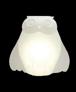 Zoolight Ugle Bordlampe/Væglampe - Intermezzo