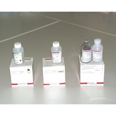 Diluent Concentrat 100 ml