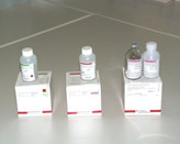 TOSOH AIA-PACK DILUENT CONCENTRATE