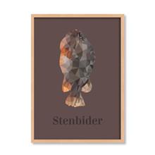 Stenbider