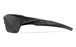 VALOR Polarized Smoke Grey<br />Matte Black Frame