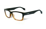 CONTOUR Clear Lens<br />Gloss Black Brown Stripe Frame