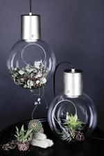 Hole Pendel Klar Glas Børstet Krom Ophæng - Globen Lighting
