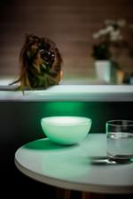 Philips Hue Color Go Trådløs Bordlampe
