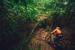 "Cannondale Habit Carbon Women's 1 | 27,5"" Mountainbike | Trail - XS"