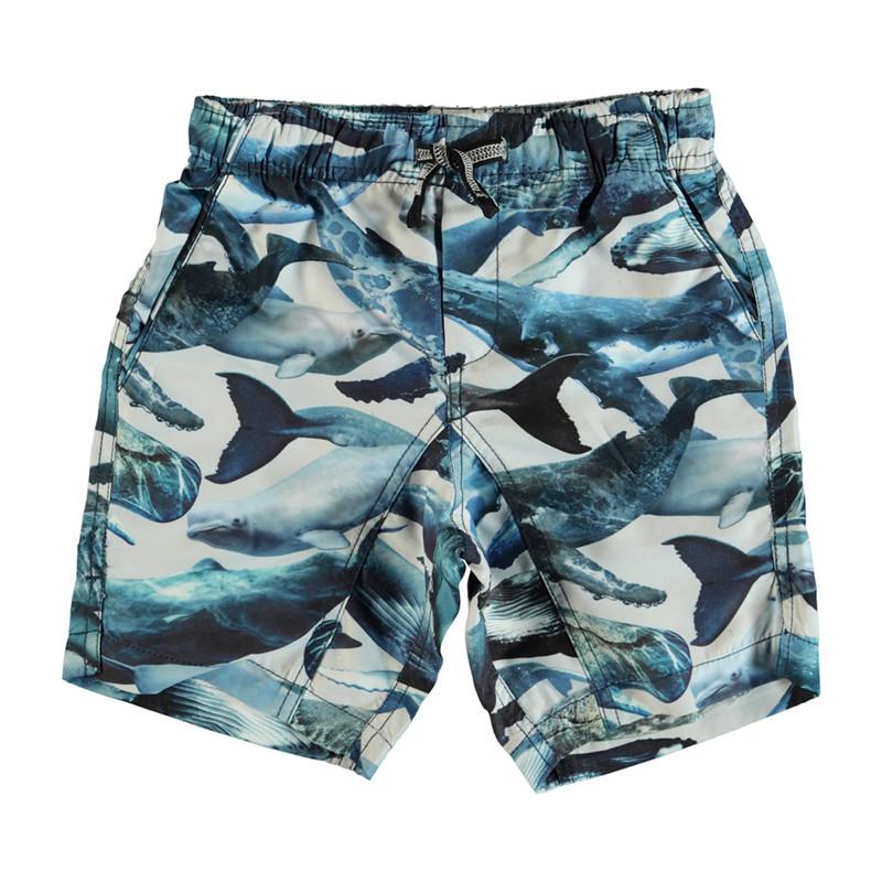 d30038d47 MOLO NARIO BADESHORTS 8S19P405 (Whales, 92/98) | Badebukser