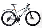 Mountainbike (Erw.)