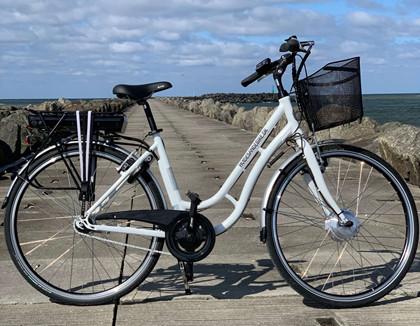 E-bike Adult