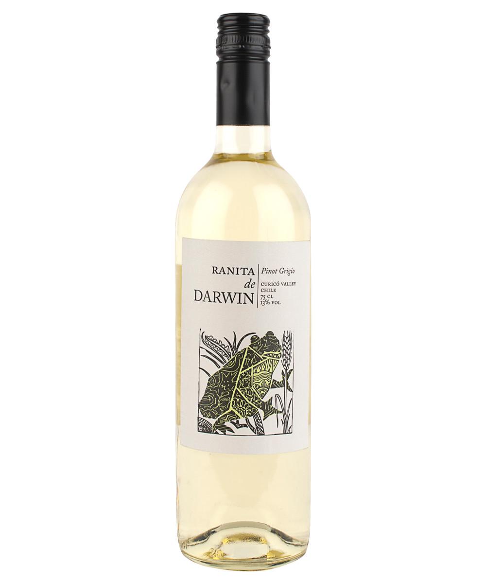 Darwin Pinot Grigio