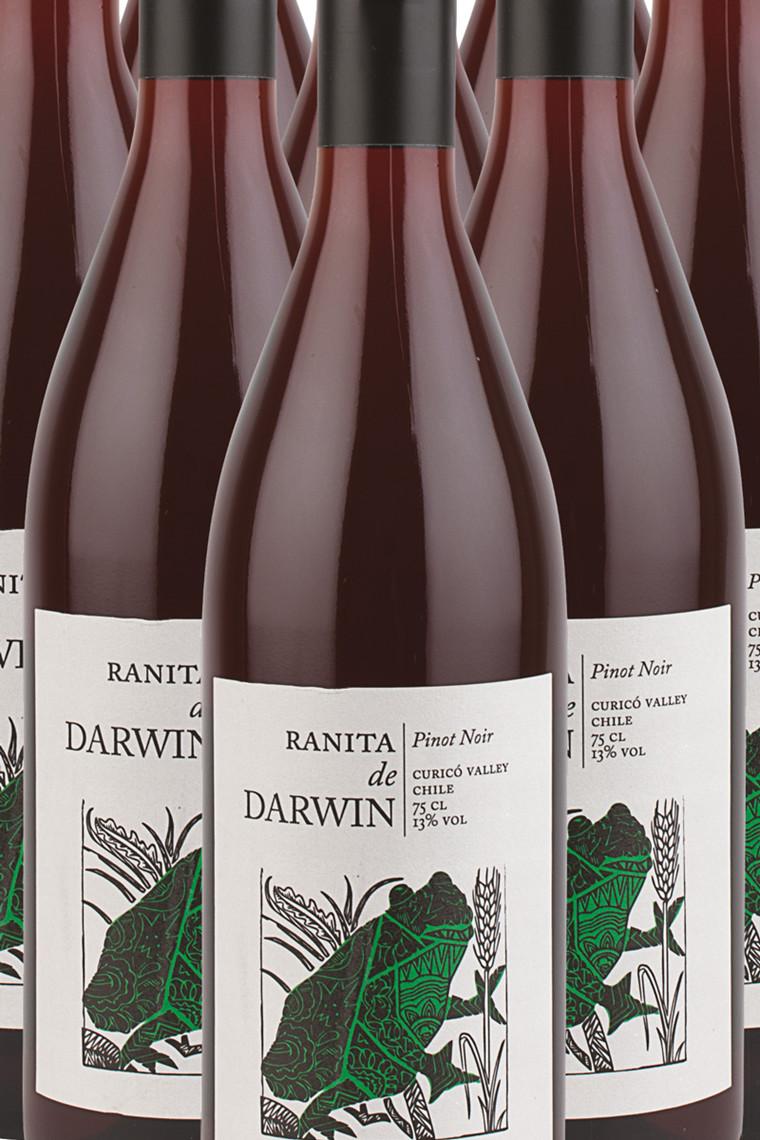 Darwin Pinot Noir
