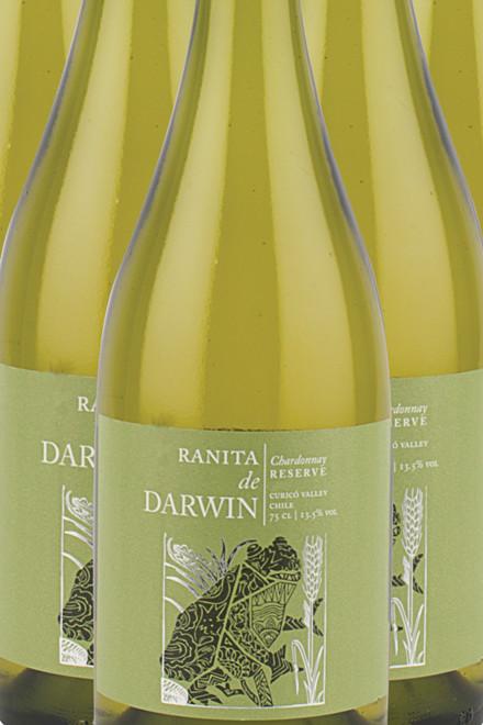 Darwin Chardonnay Reserve