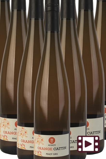 Pinot Gris Orangevin