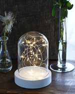 Bella glass dome w/white wooden stand H:20 cm