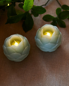 Helene LED 2 Lotus flowers Dia.7 cm sky