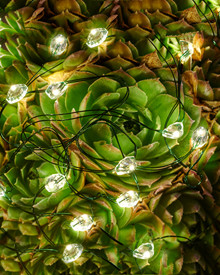 Maggie String Light 3,9 m 40-lights green