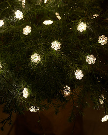 Nynne Snowflake String Light 3,9m green