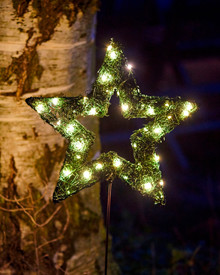 Garden Star, 30 cm + spear 60 cm