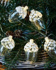 Celina String Light 8 acorns