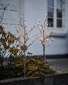 Alex Trees 2 pcs. H:80 cm 2x30 lights, snowy