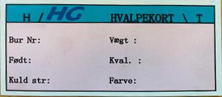 HG Karta dla młodych, Czerwona Dk 1000 szt/paczka