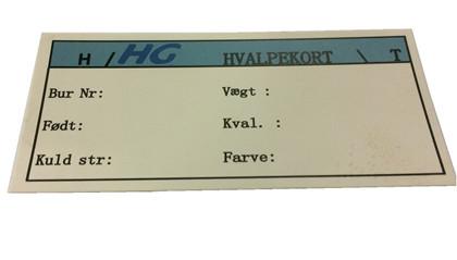 HG Karta dla młodych, Biała DK 1000 szt/paczka