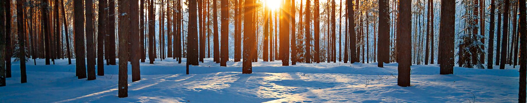 Undgå vinterfyring