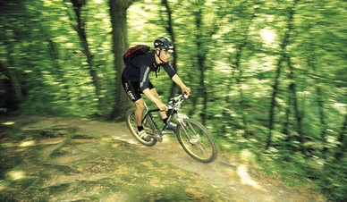 MOUNTAINBIKE_4_(3).jpg