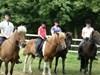 Ridelejr eller Familietur på heste ryg :)