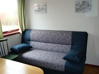 Sofa bed in room type 1